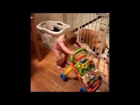 Headbanging Toddler Evy Handles 'Bohemian Rhapsody' Perfectly