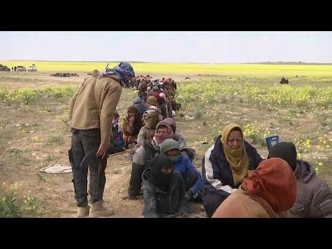 Турция возвращает боевиков