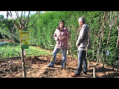 Le rendez vous des jardins 09 youtube for Rendez vous des jardins
