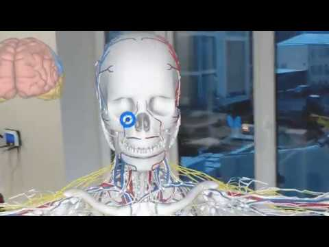 Anatomy in HoloLens
