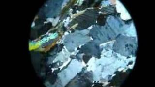Petrology - H - Biotite Gneiss cross polarised