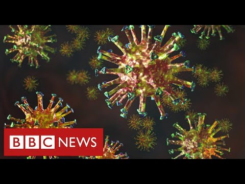 "New mutated coronavirus from South Africa is ""highly concerning"" – BBC News – BBC News"