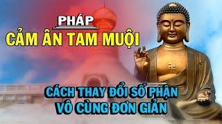 CÁCH THAY ĐỔI SỐ MỆNH vô cùng đơn giản do ĐỨC PHẬT chỉ dạy - Thiền Đạo