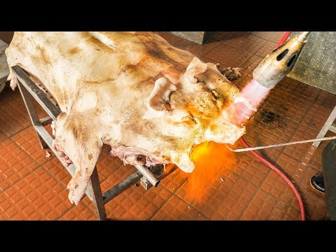 AMAZING Chinese Food in South China | WHOLE Pig Cooking + Crispy Roast BBQ Whole Pig HOG!