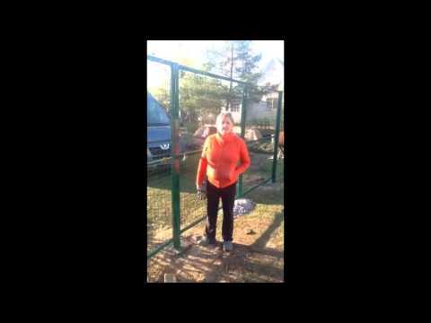 Забор из рулонной, сварной сетки