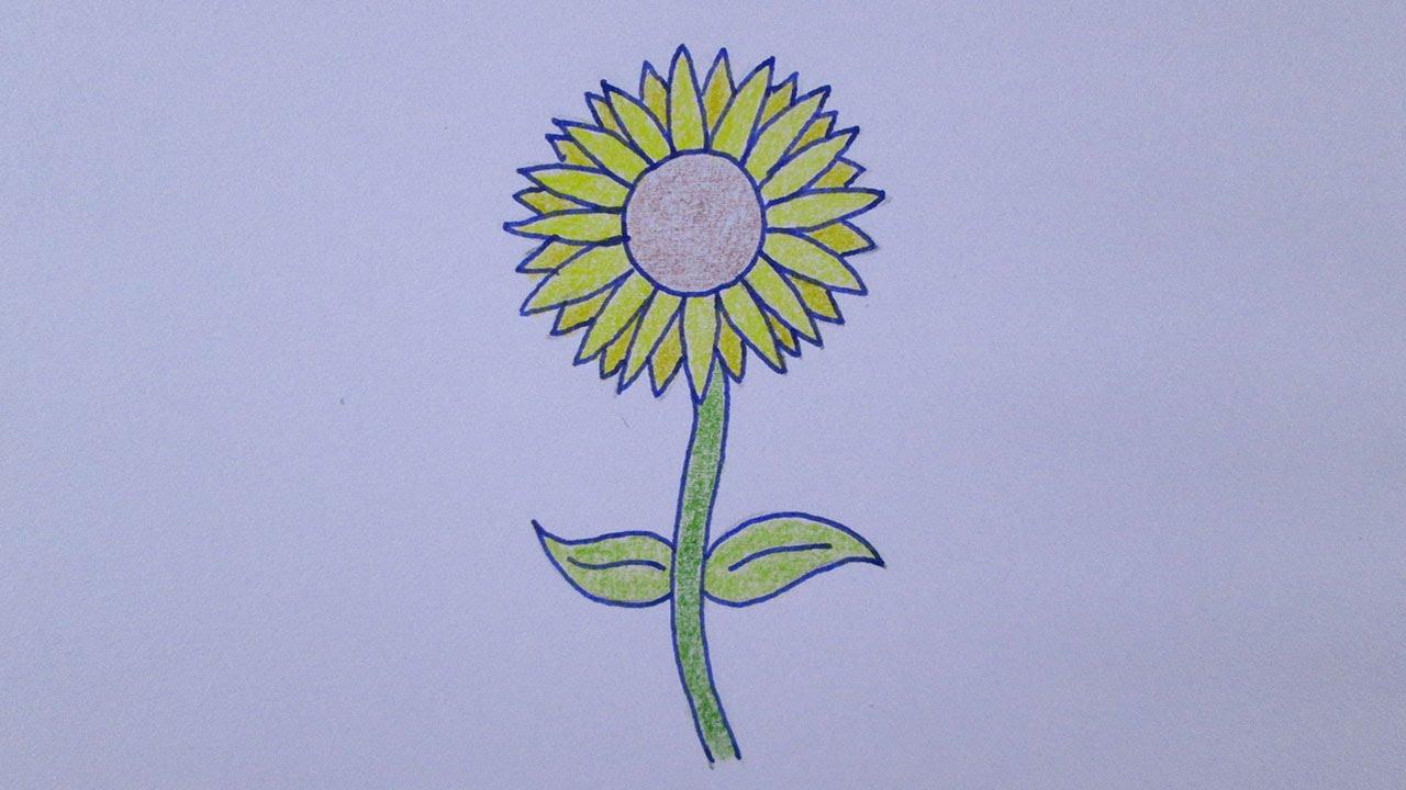 4 Tumblr Flowers T Girasoles Flores And Flor Girasol