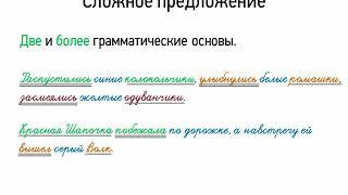 Сложное предложение (5 класс, видеоурок-презентация)