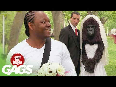 You'd Better Bring A Bouquet For This Gorilla Bride!