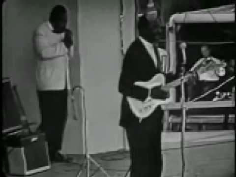 Video von Muddy Waters