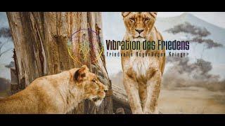 VIBRATION DES FRIEDENS