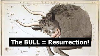The BULL = Resurrection!