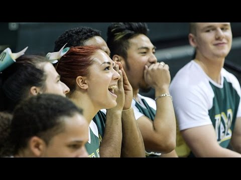 UAA Seawolves women's volleyball team has record turnout for matches