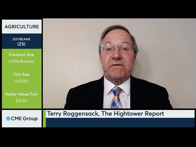 October 19 Grains Commentary: Terry Roggensack