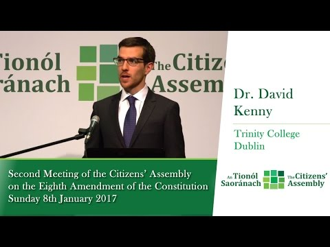 Dr. David Kenny - Second Meeting of the Citizens' Assembly - Jan 8 2017 (Irish)