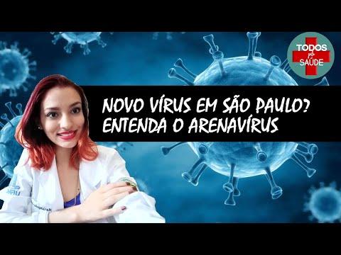 Novo vírus em São Paulo. ENTENDA O ARENAVÍRUS
