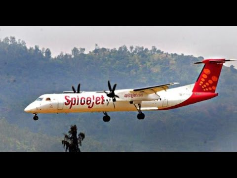 SpiceJet announces 'Happy New Year Sale' on domestic flights