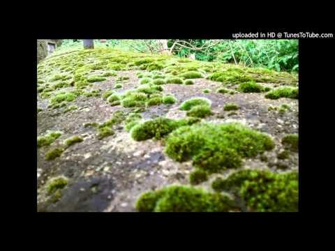 Jahcoozi - Watching you (Original Mix)