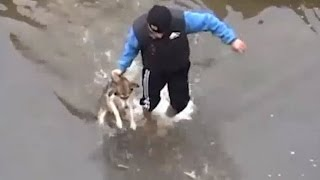Drowning Puppy Shows Pure Joy After Rescue