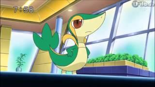 Pokemon BW-Rivalen Schicksale Voller Ihnen
