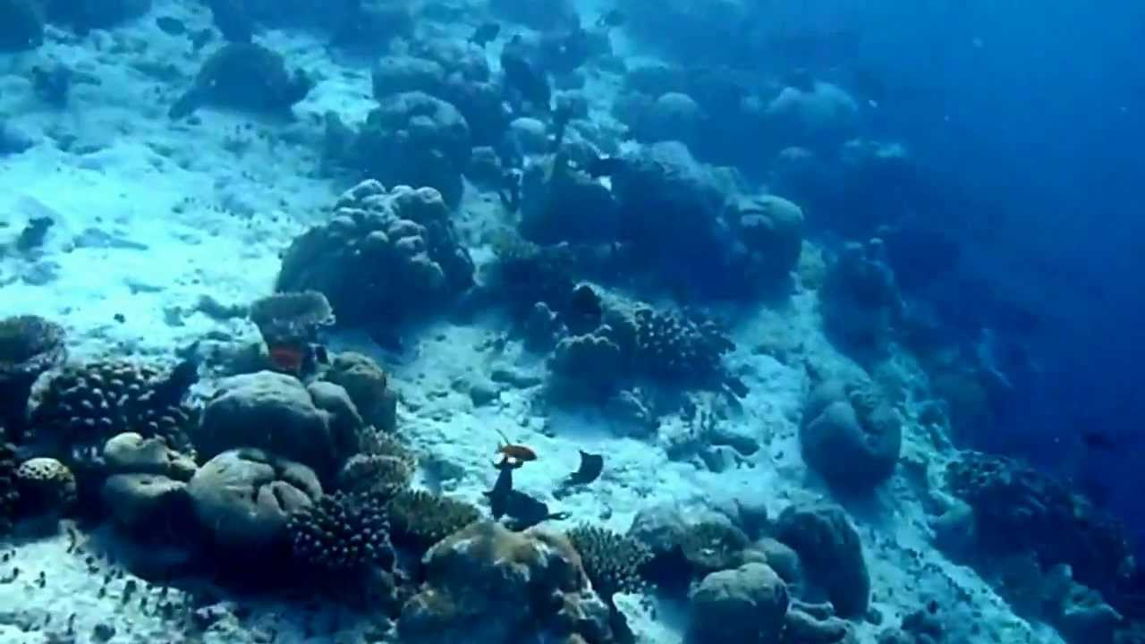 6 Wolrd's Paradise in Maldives