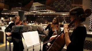 Western Female String Trio - Annual Dinner - Birkun Productions Live Musicians for Hire