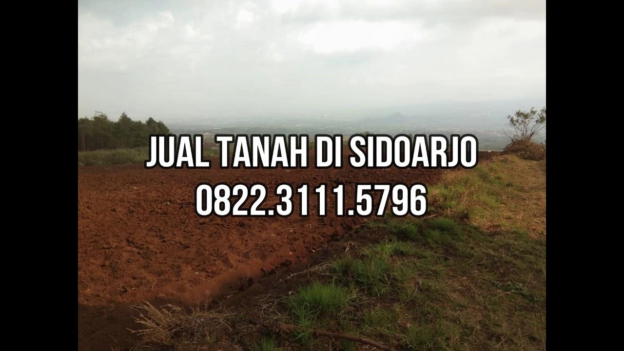 Jual Tanah Di Sidoarjo - 0822.3111.5796 - YouTube