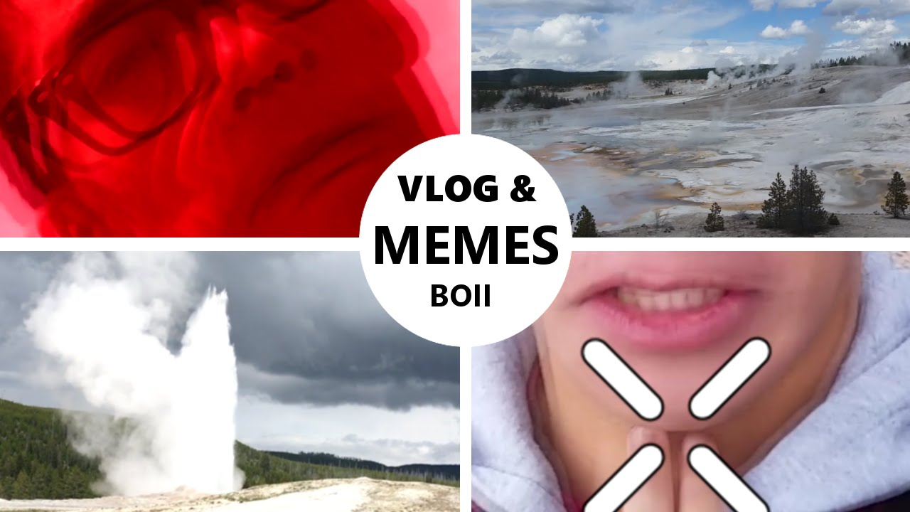 The Dankest of the Dank  Vacation Vlog With Memes Galore