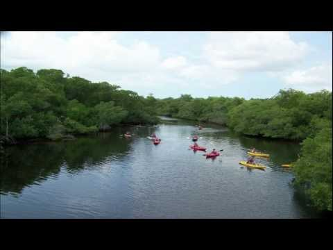 GTM Research Reserve Video Series Ep. 3 Ecosystem Services