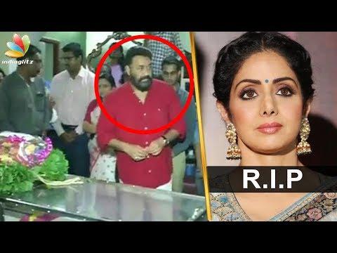 ശ്രീദേവിക്ക് ആദരാഞ്ജലികൾ അർപ്പിച്ചു മലയാള സിനിമ ലോകം | Kerala Pays Tribute to Sridevi