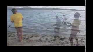 Рыбалка на сазана на реке Урал в Казахстане