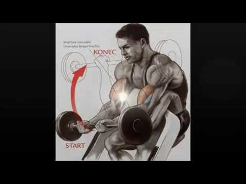 Martin Gabko-Cviky na biceps/triceps ( Pro začátečníky )