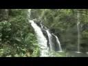 Best Stops Road to Hana Maui