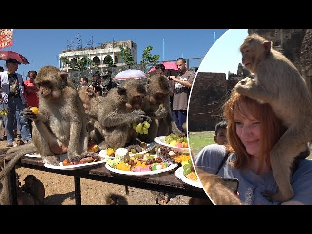 Primate Picnic! This Monkey Birthday Party Buffet Is Crazy