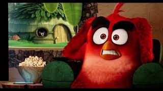 Zobacz Angry Birds 2 w kinach Helios ;)