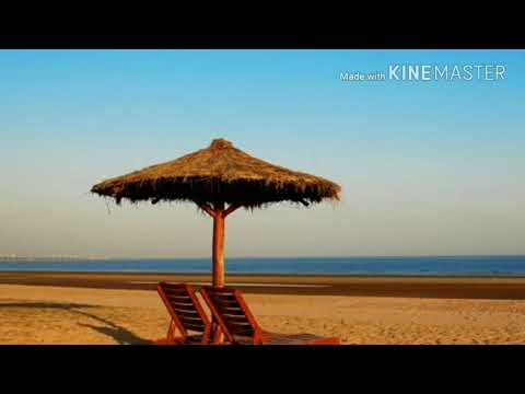 Kutch Gujarat Tourism Guide  Place to visit in Bhuj  Kutch by all in one