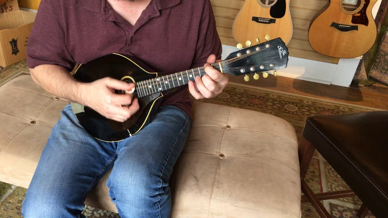 Fiddler's Green Music Shop - Local Austin Texas Folk Instruments