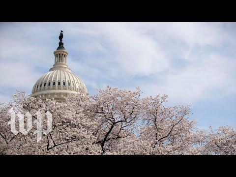 Senators speak to reporters