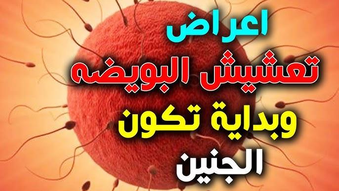 ما هي الفروق بين دم انغراس البويضة التعشيش و دم الدورة الشهرية Youtube