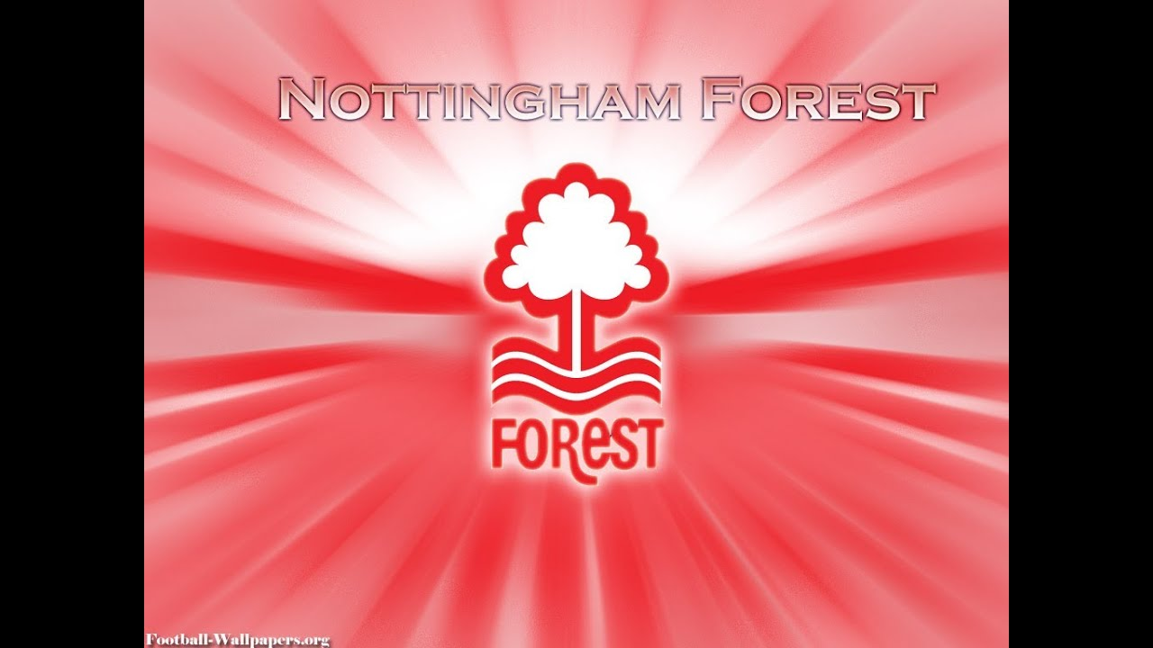 Fifa 14 Nottingham Forest Ultimate Team Squad Builder