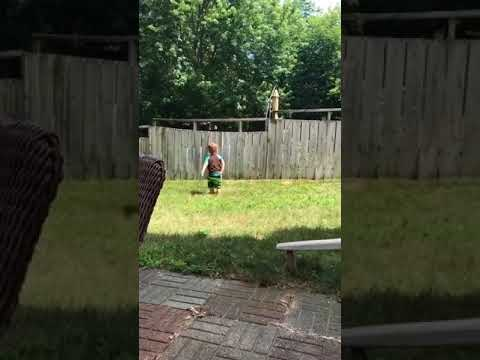 Adorable toddler plays fetch with dog despite backyard fence