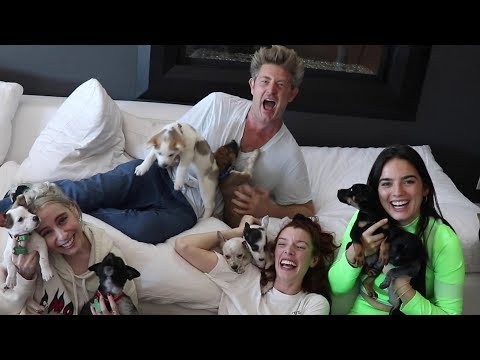 SURPRISING VLOG SQUAD WITH PUPPIES FOR CHRISTMAS!!