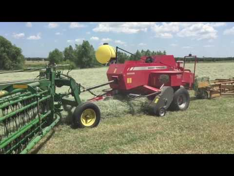 Baling horse hay with the new Massey Ferguson 1840 - Second Cutting '17