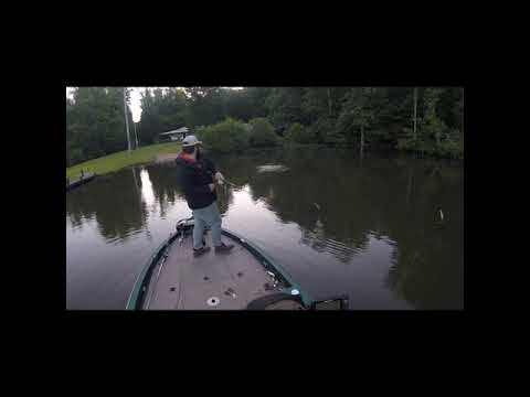 Bass Fishing Lake Harding In May