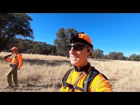 Arizona Mearns Quail Hunting   Gould Brothers VLOG