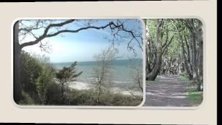 Bungalow Urlaub an der Ostsee / Rügen