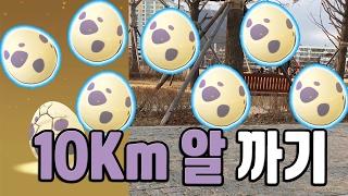 포켓몬고 10Km 알 전부 까 보자! 망나뇽 갸라도스 2차 진화 도전! 포켓몬GO [Pokemon GO] - 기리