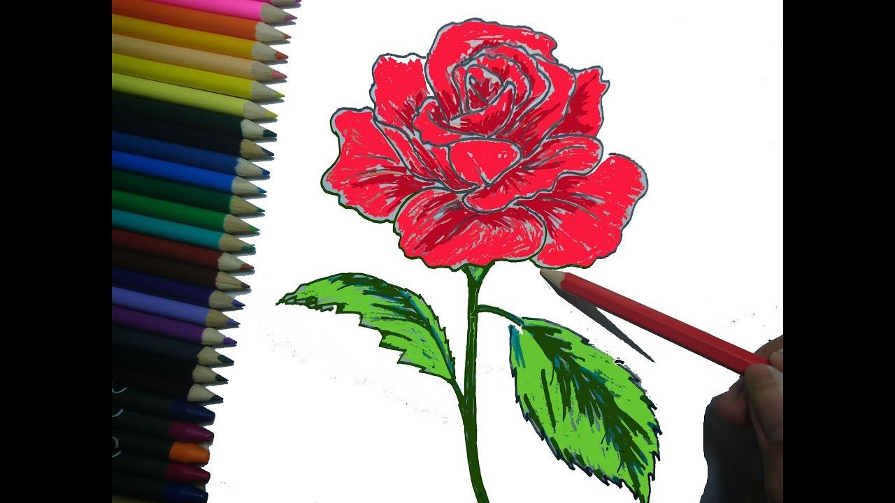How to Draw a Cute Rose | cách vẽ bông hồng cực đẹp