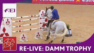 Re-live - Jumping (CSI 5*) - Madrid Horse Week - Damm Trophy
