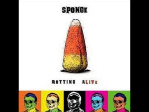 Sponge - Plowed