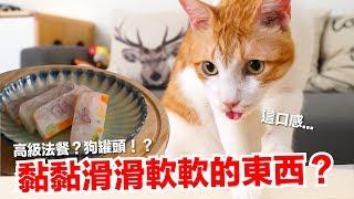 用豬皮!?做出高級法式貓料理【貓副食食譜】好味貓鮮食廚房EP160